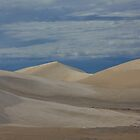 Sand dunes near the Pinnacles by Anton  Muhlbock
