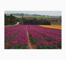 tulips give way to eucalypts Kids Clothes