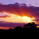 Let it shine.... South Australia by Ali Brown