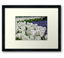 Colorful Union Framed Print