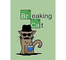 Breaking Cat  Photographic Print