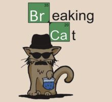 Breaking Cat  by Lurtze