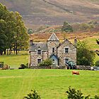 Scottish Pastorale (On the A9, Pitlochry, Perthshire, Scotland, UK.) by Yannik Hay