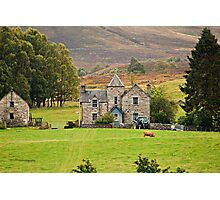 Scottish Pastorale (On the A9, Pitlochry, Perthshire, Scotland, UK.) Photographic Print