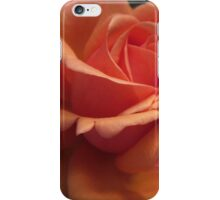 Orange Downton Abbey Rose iPhone Case/Skin