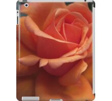 Orange Downton Abbey Rose iPad Case/Skin