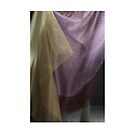 cloth janurary by lawrencew