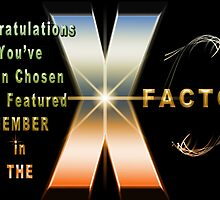 The X Factor Feature Group Banner Challenge by Photography by TJ Baccari