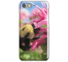 Bumble Bee in Bee Balm iPhone Case/Skin