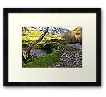 Bridge Approach  - Wasdale Head Framed Print