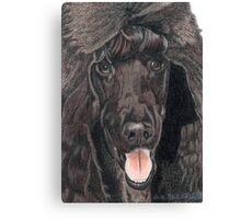 Standard Poodle Vignette Canvas Print