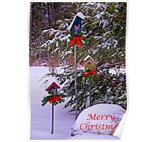 Christmas For the Birds Card Poster