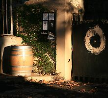 Sun lit wine barrel Capestang France by Paul Pasco