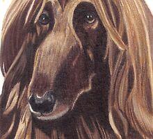 Afghan Hound Vignette by Anita Meistrell Putman