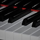 Piano Keys by Nicole Jeffery