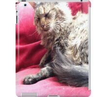 My Mimi sleeping iPad Case/Skin