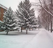 Moorhead MN First Snowstorm1a by Sazzart