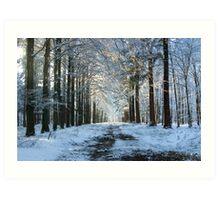 Lane through snowy woods  Art Print