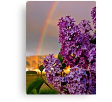 Rainbow over lilacs - the month of May Canvas Print