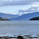 Dingle Harbour 2, Co. Kerry, Ireland by Pat Herlihy