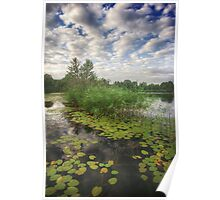 Early fall on the river Mreznica Poster