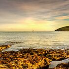Morning Glow At Penmon Lighthouse. by Jim Kernan