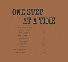 One Step at a Time by Fran Riley