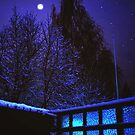 Moonshine in the winter night by Tarolino