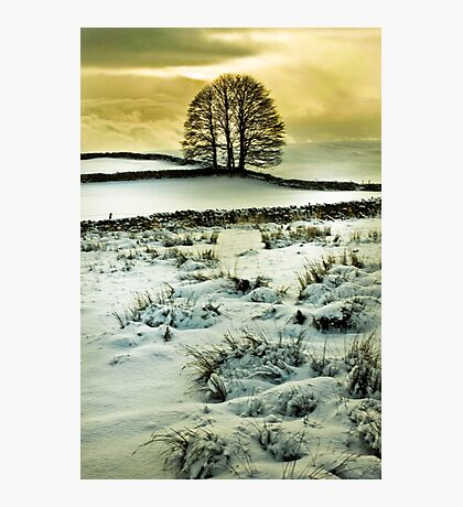 Wintry Scene Photographic Print