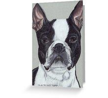 Boston Terrier Vignette Greeting Card