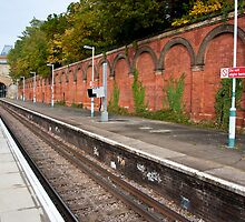 Crystal Palace Train Station: London, UK. by DonDavisUK