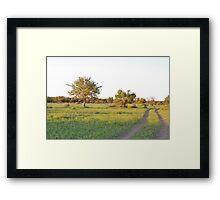 into the bush, madiwke, south africa Framed Print