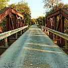 Bridge in Rural McLennan County, Texas by Susan Russell