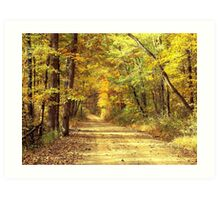 Rural Dirt Road in Madison county, Arkansas Art Print