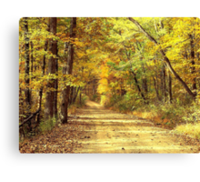 Rural Dirt Road in Madison county, Arkansas Canvas Print