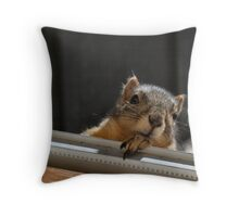 Hey There ... What's for Breakfast? Throw Pillow