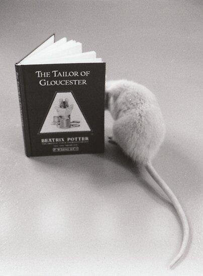 Pudge Reads Beatrix Potter by mevagh
