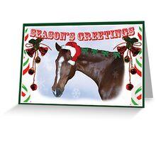 Season's Greetings card Greeting Card