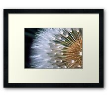 Timeless! Framed Print