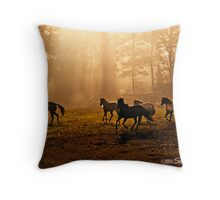 At Play in the Fields of the Lord Throw Pillow