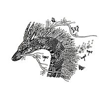 Haku The River Spirit Black and White Doodle Art Photographic Print