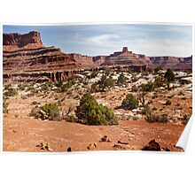 Along Canyonlands White Rim Poster