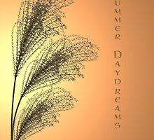 Daydreams and Memories by bicyclegirl