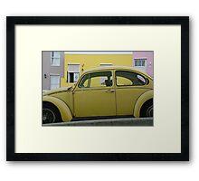 bo-kaap beetle Framed Print