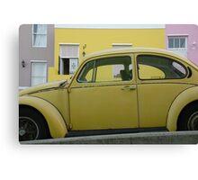 bo-kaap beetle Canvas Print