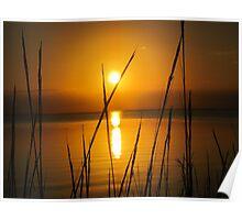 Florida golden sunset Poster