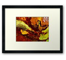 Rock Metamorphosis Framed Print