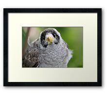 Where's My Mum? Framed Print