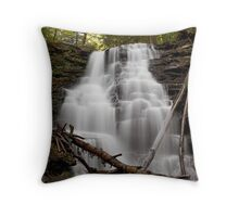 The Fall at Erie Falls (in the Fall) Throw Pillow
