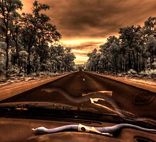 Snakes on the road by BigAndRed